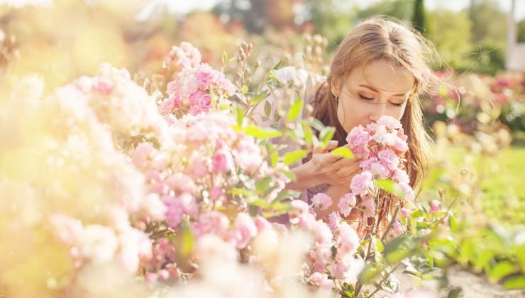 bald kommt der Frühling...