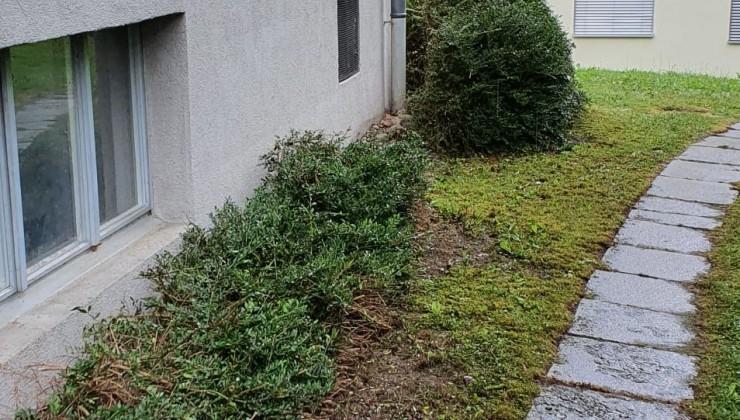 Umgebungsarbeiten Winterthur
